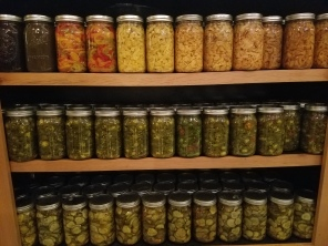 pickles stored in our dining room